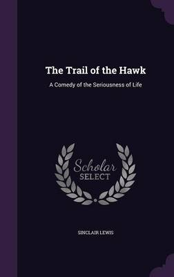 Cover The Trail of the Hawk: A Comedy of the Seriousness of Life
