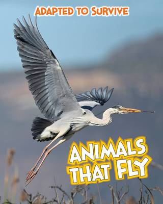 Adapted to Survive: Animals That Fly - Read Me!: Adapted to Survive (Hardback)