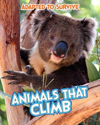 Adapted to Survive: Animals That Climb - Read Me!: Adapted to Survive (Hardback)