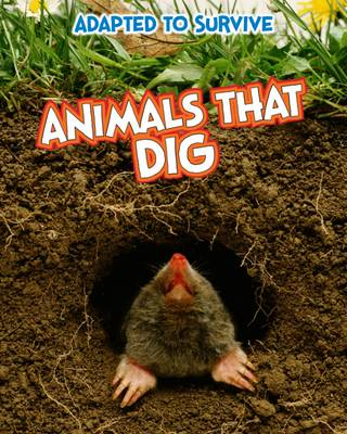 Adapted to Survive: Animals That Dig - Read Me!: Adapted to Survive (Paperback)