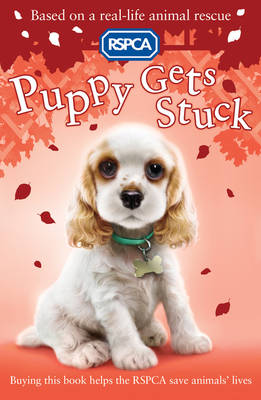 Puppy Gets Stuck - RSPCA 2 (Paperback)