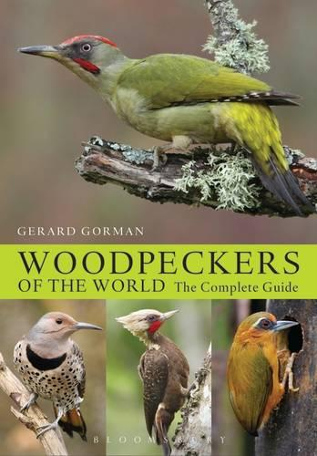 Woodpeckers of the World: The Complete Guide - Helm Photographic Guides (Hardback)