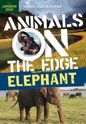 Elephant - Animals on the Edge (Hardback)