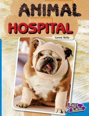 Animal Hospital Fast Lane Blue Non-Fiction (Paperback)