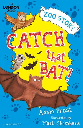 Catch That Bat! (Paperback)