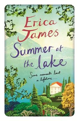 The Summer at the Lake (Hardback)