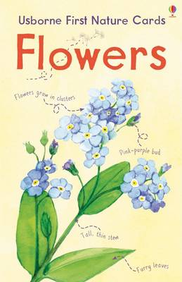 Flowers - Spotter's Cards (Cards)