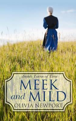 Meek and Mild - Amish Turns of Time (Hardback)