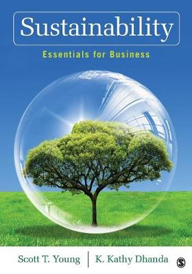 Sustainability: Essentials for Business (Paperback)