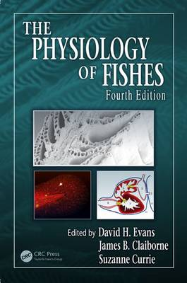 The Physiology of Fishes - CRC Marine Biology Series (Hardback)