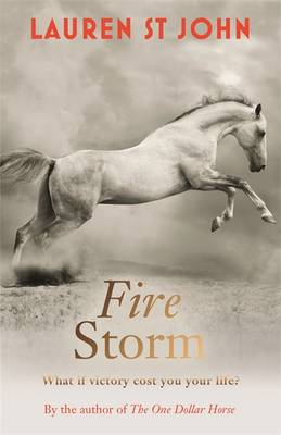Fire Storm: Book 3 - The One Dollar Horse 3 (Hardback)