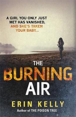 The Burning Air (Hardback)