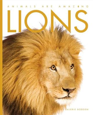 Lions - Animals are Amazing 6 (Paperback)