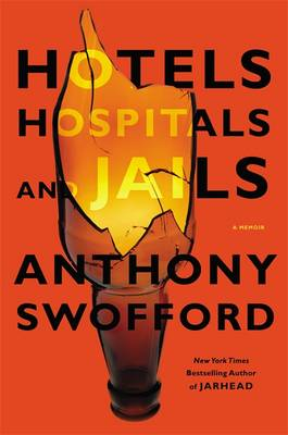 Hotels, Hospitals and Jails (Hardback)