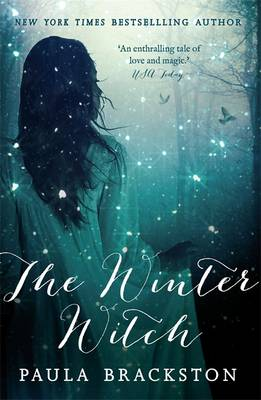 The Winter Witch - Shadow Chronicles 1 (Paperback)