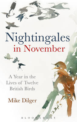 Nightingales in November: A Year in the Lives of Twelve British Birds (Hardback)