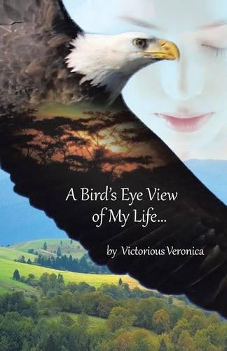 A Bird's Eye View of My Life (Paperback)