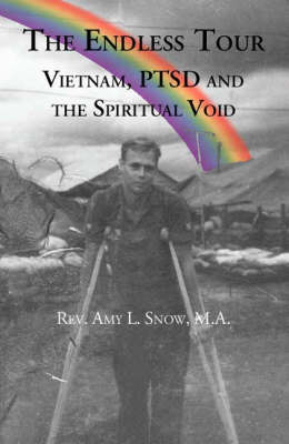 The Endless Tour: Vietnam, Ptsd, and the Spiritual Void (Paperback)