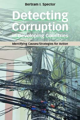 Detecting Corruption in Developing Countries: Identifying Causes/Strategies for Action (Paperback)