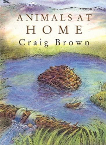 Animals at Home (Paperback)