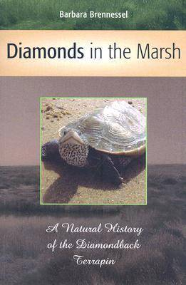Diamonds in the Marsh: A Natural History of the Diamondback Terrapin (Paperback)