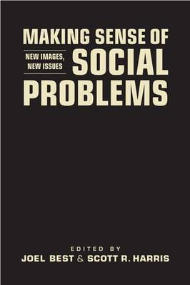 Making Sense of Social Problems: New Images, New Issues (Hardback)