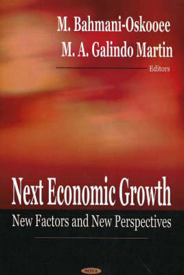 Next Economic Growth: New Factors and New Perspectives (Hardback)