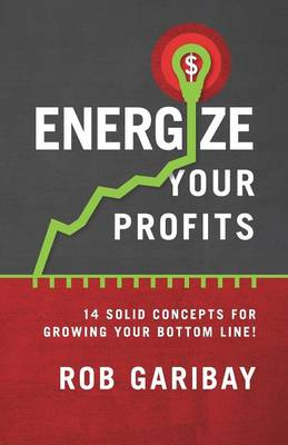 Energize Your Profits: 14 Solid Concepts for Growing Your Bottom Line! (Paperback)