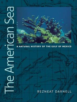 The American Sea: A Natural History of the Gulf of Mexico - Harte Research Institute for Gulf of Mexico Studies Series (Hardback)