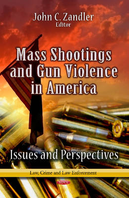 Mass Shootings and Gun Violence in America: Issues and Perspectives (Hardback)