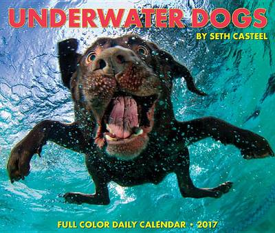 Cover Underwater Dogs