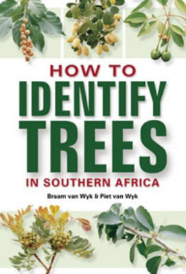 How to Identify Trees in Southern Africa (Paperback)