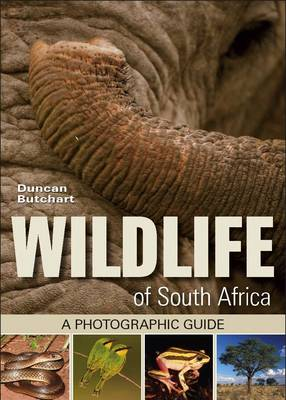 Wildlife of South Africa: A Photographic Guide (Paperback)