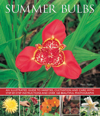 Summer bulbs: An Illustrated Guide to Varieties, Cultivation and Care, with Step-by-step Instructions and Over 160 Beautiful Photographs (Paperback)