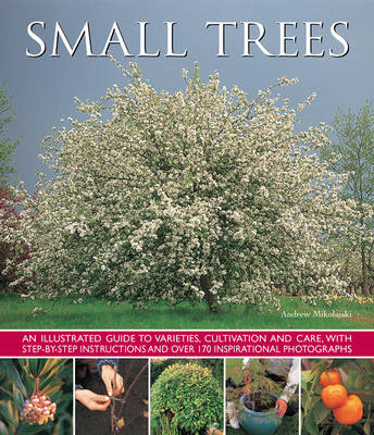 Small Trees (Paperback)