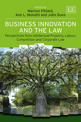 Business Innovation and the Law: Perspectives from Intellectual Property, Labour, Competition and Corporate Law (Hardback)