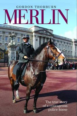 Merlin: The True Story of a Courageous Police Horse (Book)