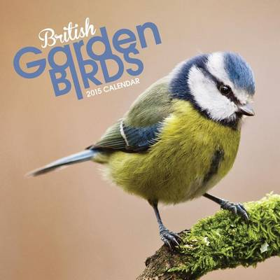British Garden Birds Mini: Mini (Calendar)