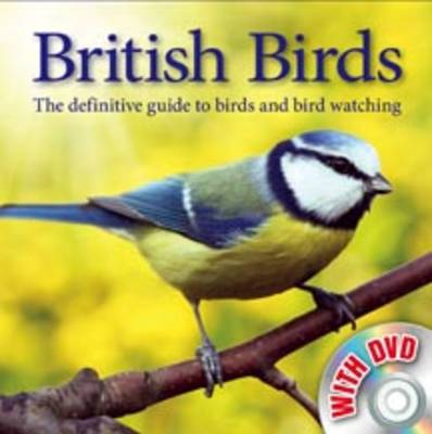 Bird Watching (Hardback)