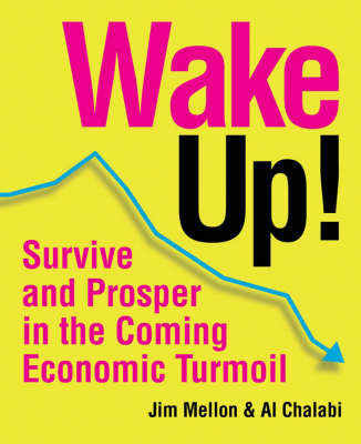 Wake Up!: Survive and Prosper in the Coming Economic Turmoil (Paperback)