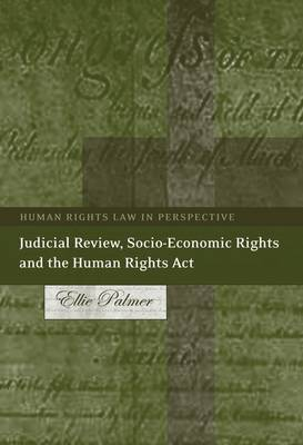 Judicial Review, Socio-economic Rights and the Human Rights Act - Human Rights Law in Perspective 10 (Hardback)