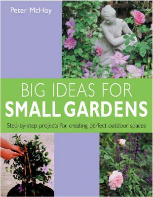 Big Ideas for Small Gardens: Step-by-step Projects for Creating Perfect Outdoor Spaces (Paperback)