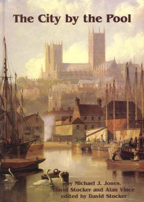 The City by the Pool: Assessing the Archaeology of the City of Lincoln - Lincoln Archaeology Studies No. 10 (Hardback)