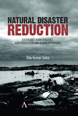 Natural Disaster Reduction: South East Asian Realities, Risk Perception and Global Strategies - Anthem South Asian Studies (Hardback)