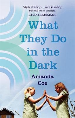 What They Do in the Dark (Paperback)