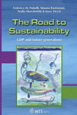 The Road to Sustainability: GDP and future generations - Sustainable World No. 18 (Hardback)