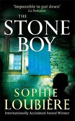 The Stone Boy (Paperback)
