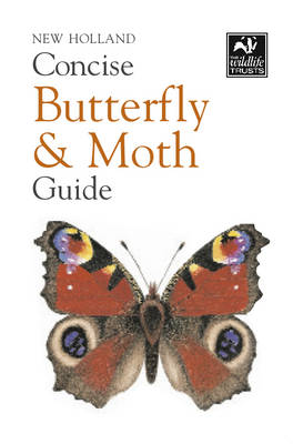 New Holland Concise Butterfly and Moth Guide - New Holland Concise Guides (Paperback)