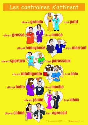 "French Poster (""Les Contraires S'attirent"") (Poster)"