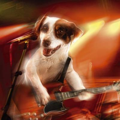 DOR 002: Dogs of Rock Greeting Cards (Cards)